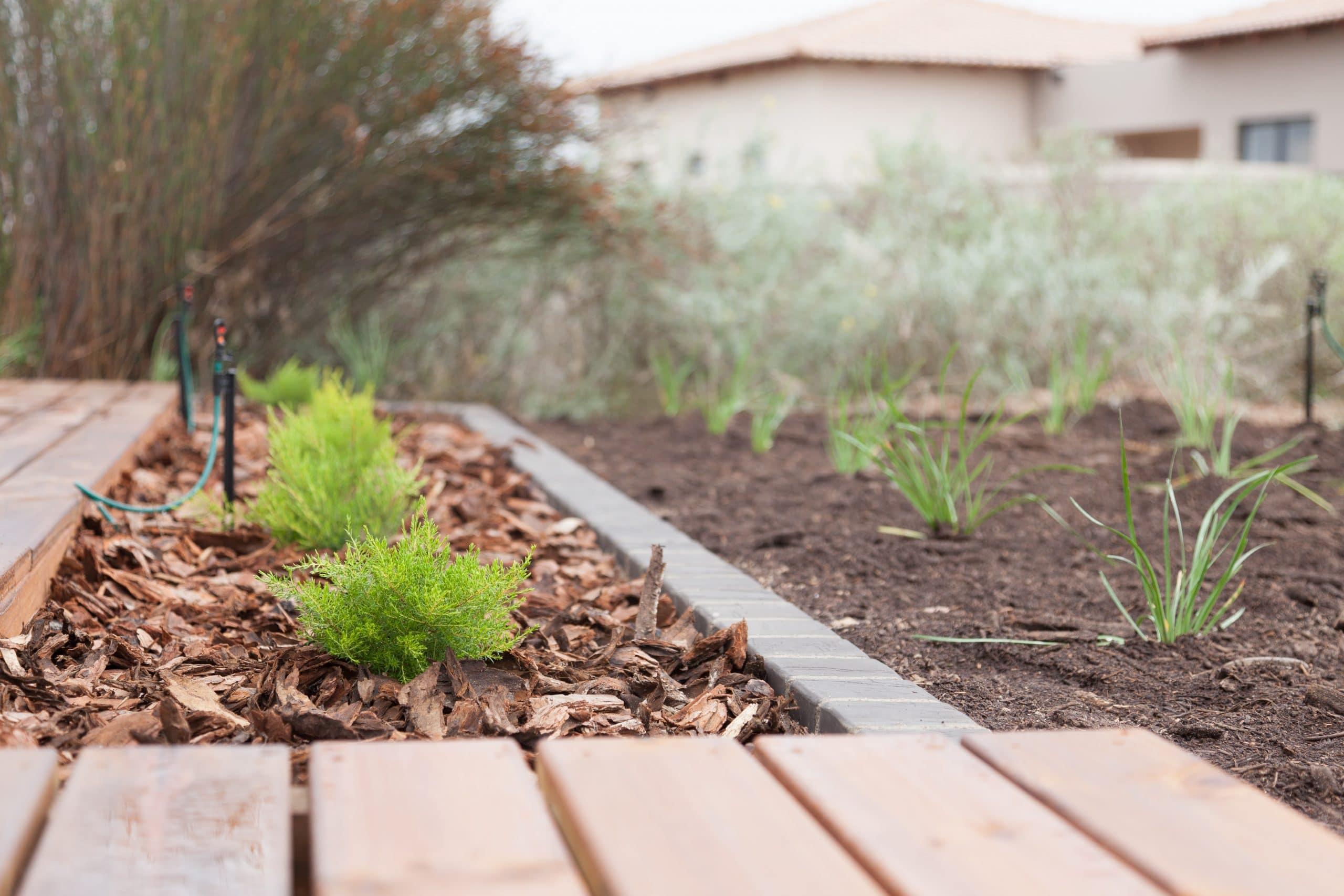 langebaan country estate designer landscaping